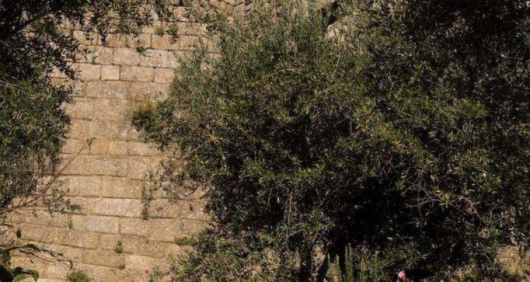 Castelo de Belmonte