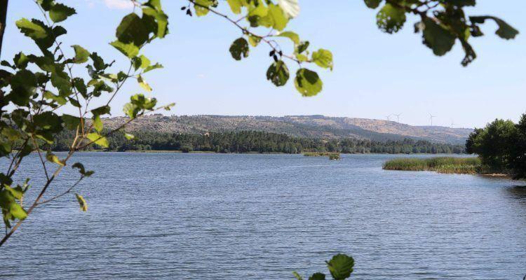 Barragem da Teja