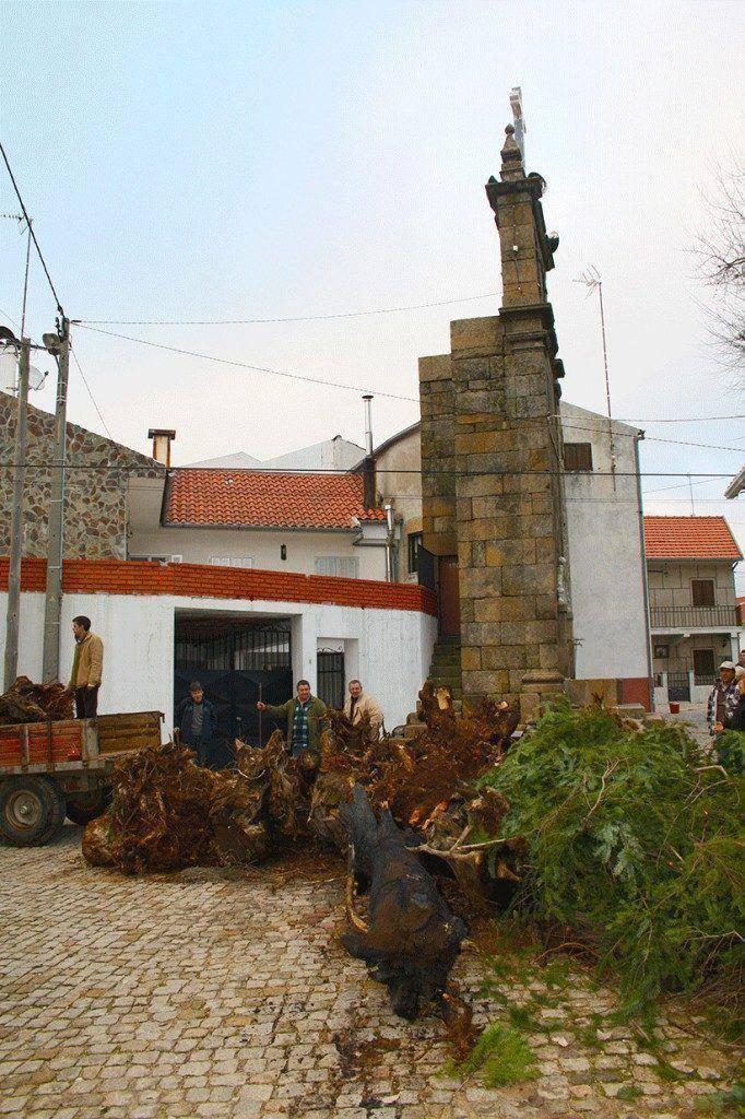 madeiro-vale_de_espinho