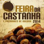 Cartaz_feiraCastanha_2014