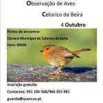 eurobirdwactch_Celorico_da_Beira_2