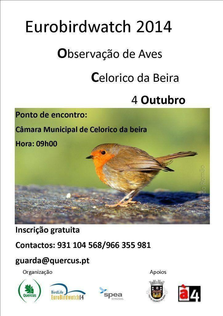 Eurobirdwatch em Celorico da Beira